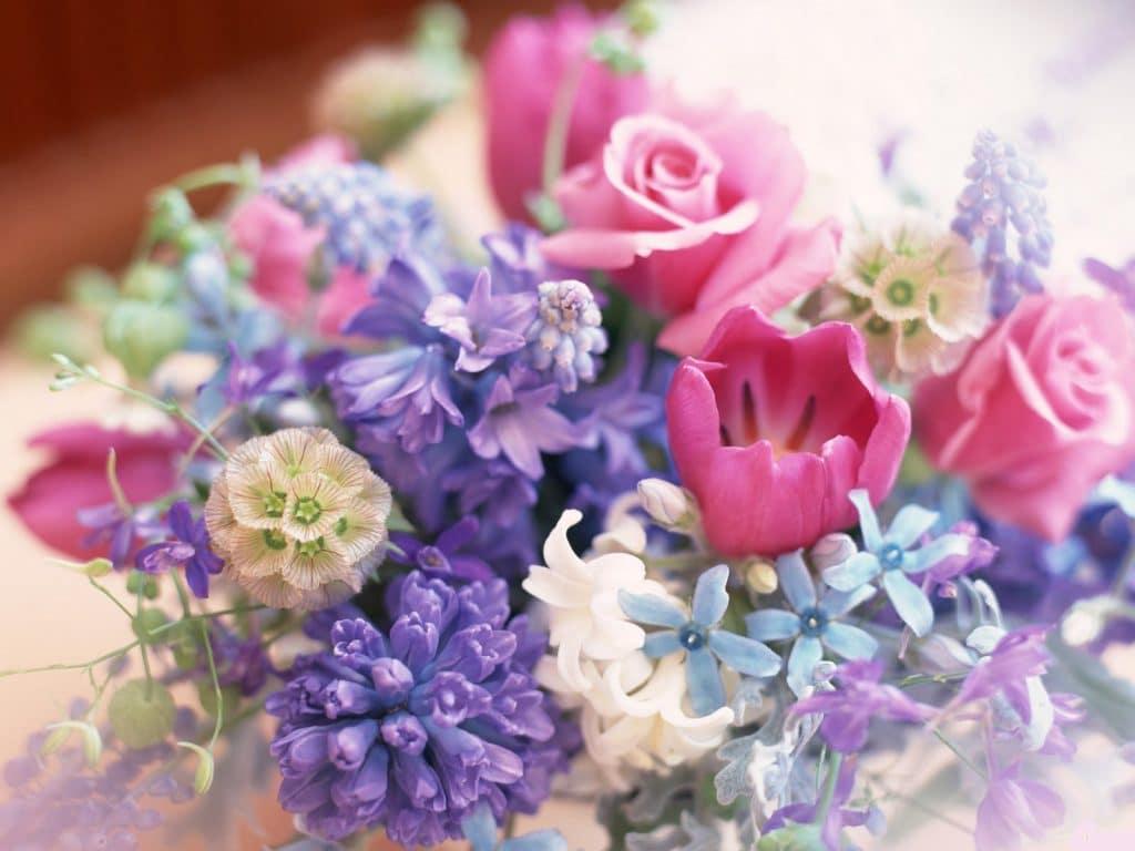 Идеи подарков на юбилей 55 лет женщине